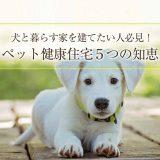 犬と暮らすペット健康住宅