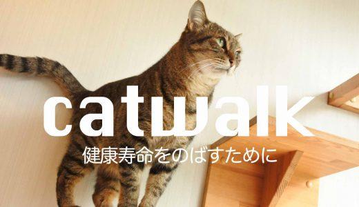 猫と暮らす住宅。キャットウォークの作り方や費用などの注意点
